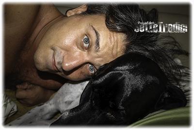 fotografia, anneke, famiglia, duca, pointer, cane a letto