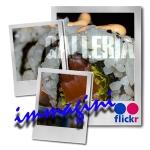 galleria immagini, sushi, all you can eat, hanami