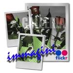 galleria immagini, flickr, fotografia, famiglia